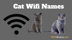 Cat Wifi Names