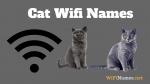 Cat Wifi Names